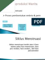 Siklus Mentruasi & Proses Pembentukan Janin & Embrio (Harry Pribadi, Nur Aulia, Immanuel Christian Yobel)