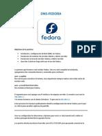 DNS Fedora