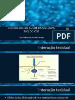 Efeitos da luz sobre os sistemas biol+¦gicos