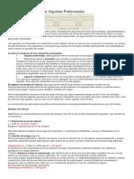Cálculo de una Losa de Viguetas Pretensadas.docx