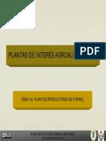 Tema 18 Plantas Para Elaborar Fibras Textiles