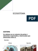 Ecosistema Parte 1