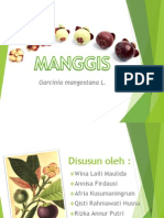 all about Manggis