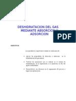 Deshidratacion Mediante Absorcin y Adsorcion