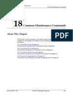 Common Maintenance Commands