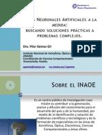 PggEIA11.pdf