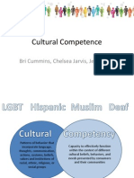 hsc 300 - - cultural competence presentation