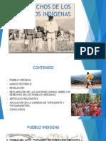 DERECHOS DE LOS PUEBLOS INDÍGENAS IMAGENES