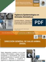 5 Vigilancia Epidemiologica en Animales Domesticos (Octubre 2012)