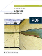 carbon capture - Sequestration and Storage 2010.pdf