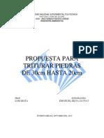 Propuesta Para Triturar Roca, Emanuel Silva