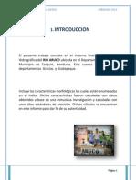Proyecto Final Hidro
