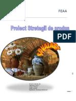 Proiect Strategii Andreea Ioana Ana - Mihai (1)