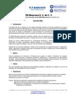CV MRWMexicana