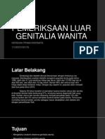 Pemeriksaan Luar Genitalia Wanita