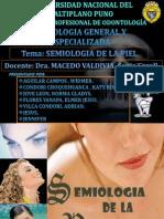exposicion piellll (1)
