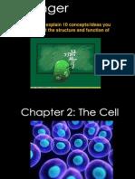 anatomy presentation ch 2