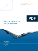 Reporte Modelo FOCUS