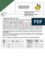 201282016019informe Gestion Julio 2012
