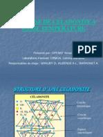 Présentation celadonite.pdf