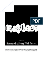 Banner Grabbing