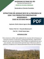 Estructura del bosque seco la provincia de Loja y sus productos forestaes no maderables.pdf