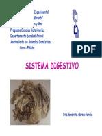 sistemadigestivo-111004161605-phpapp01