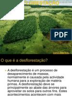 desflorestao-110511030716-phpapp02
