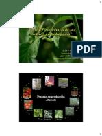 9) Manejo fitosanitario de los cultivos-Panamá