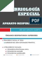 Aparato Respiratorio 2013 - II
