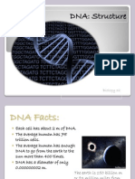 1 DNA Structure