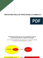 7. DEPISTAREA BOLILOR INFECŢIOASE LA ANIMALE - II