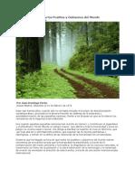 Mensaje Ambiental a Los Pueblos y Gobiernos del Mundo