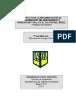MODELO PARA LA IMPLEMENTACIÓN DE LINEAMIENTOS DEL MPT EN EL CULTIVO DEL ARROZ Félix Andrés Arango Castro.pdf