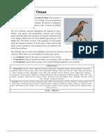 Birds of Oman