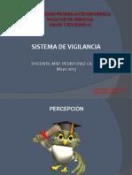 8. Sistema de Vigilancia