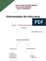 13. Enfermedades No Infecciosas