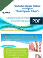 Cid Corregido