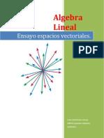 espacios vectoriales(1)