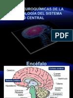 Bases Neuroquímicas de la farmacología del Sistema nervioso
