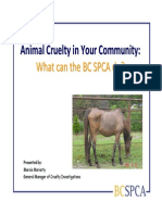 Bc Spca Overview of a Cruelty