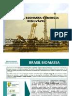 Brasil Biomassa Co-geracao de Energia