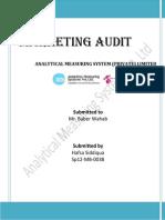 Marketing Audit, Marketing Management
