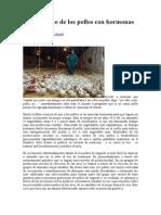 El Falso Mito de Los Pollos Con Hormonas