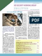 FSWG Newsletter No.3 November 2013