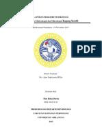 Laporan Praktikum Mikologi Xerofit