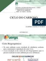 Apresentação Ciclo do Carbono