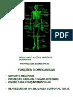 1 sistema osseo, articular, tendões