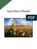 Agricultura Olandei