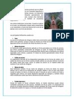 Fertilizantes - Copia